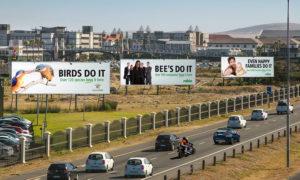 Machete Creative 28 Sep, 2020 BIRDS